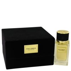 Dolce & Gabbana Dolce & Gabbana Velvet Patchouli Eau De Parfum Spray